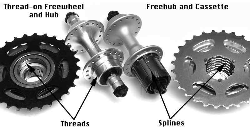 freewheel vs. cassette