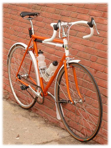 Sheldon's Rambouillet bicycle with fenders