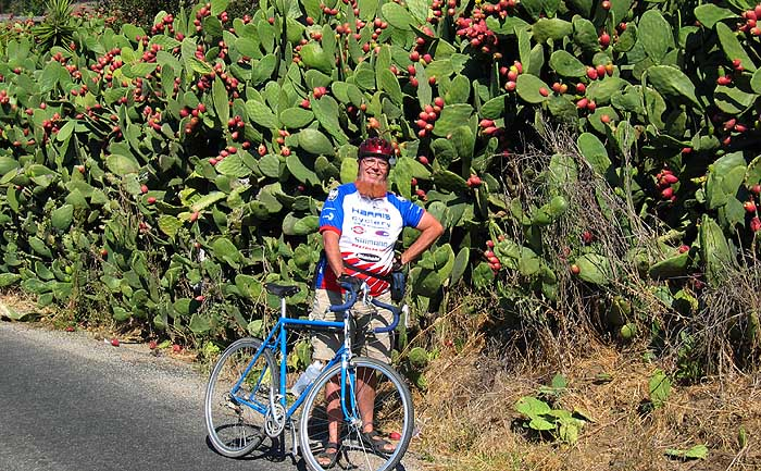 Sheldon Brown with Prickly Pear Cacti-Jobst Brandt Photo