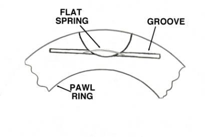 pawl ring